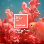Living Coral: A Cor do Ano Pantone 2019