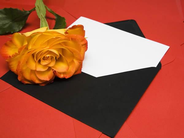 Modelos de Convite de Casamento - Aplicativo On-line