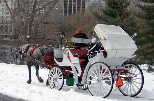 Carros e Carruagens