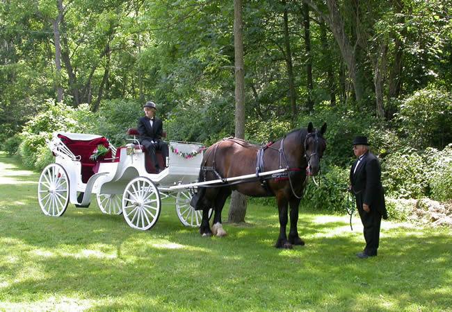 Carruagem para Casamento, Helicóptero e Outros