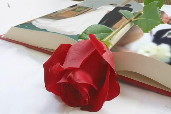 Wedding Book  / Livro de Casamento